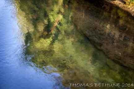 UMPQUA RIVER REFLECTIONS