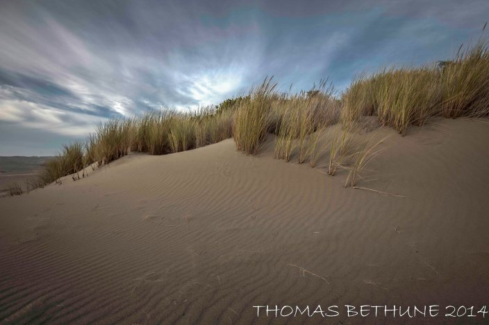 Ma_le'l Dunes