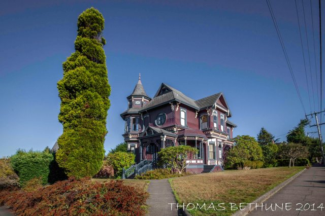 From Wednesday's walkabout Arcata
