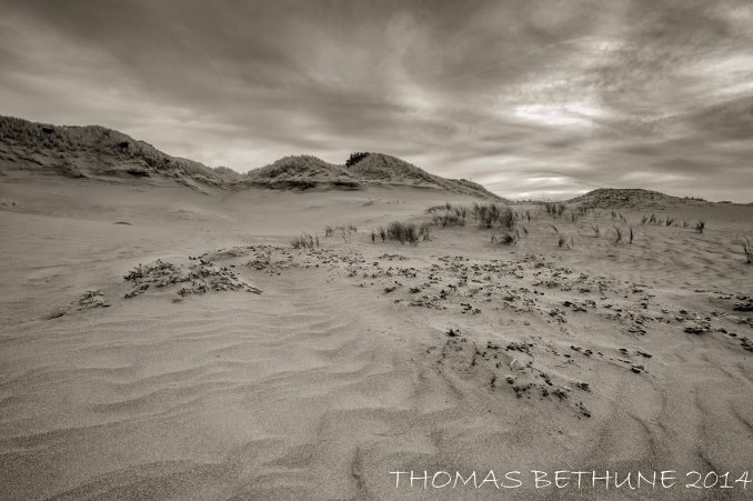 Another image of the dunes at ma le'l.