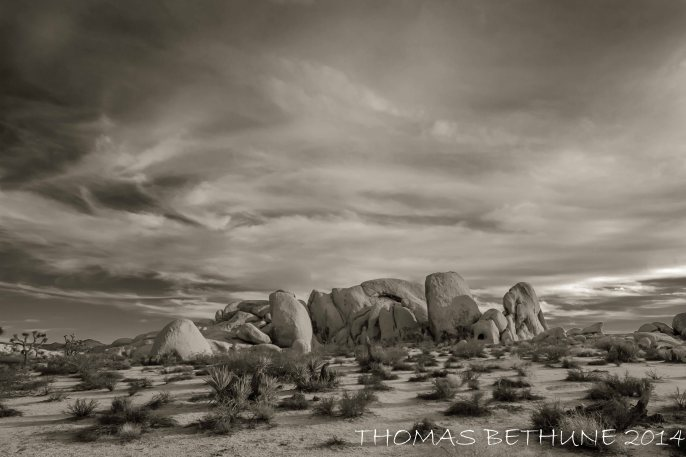 Joshua Tree National Park Rocks