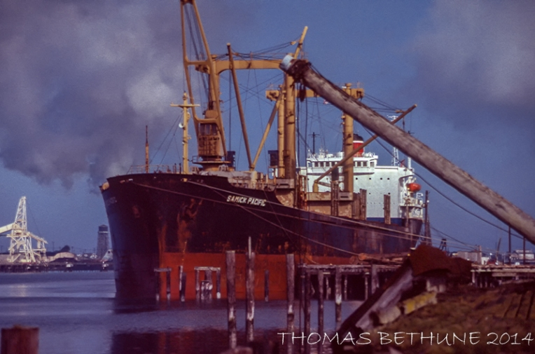 Samick Pacific, 1982