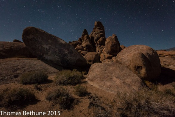 A Sceret Gathering Under the Waxing Moon (13 of 1)