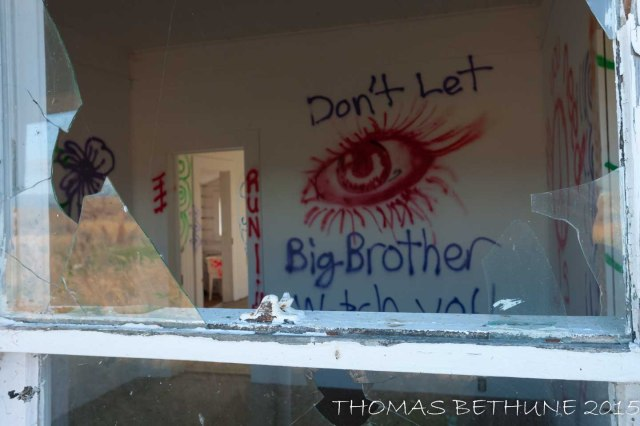 big brother (1 of 1)