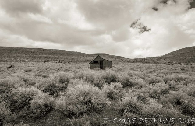 bodie series (1 of 1)