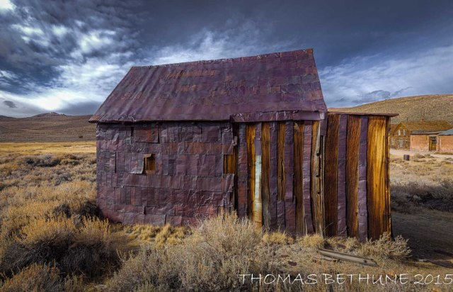 bodie solo (1 of 1)