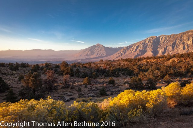 sunrise_on_the_east_face_of_the_sierra_nevada_and_mount_tom-1