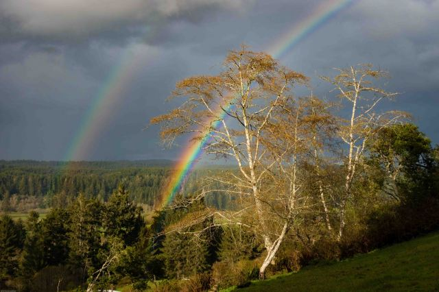 rainbow_near_little_river-1-2